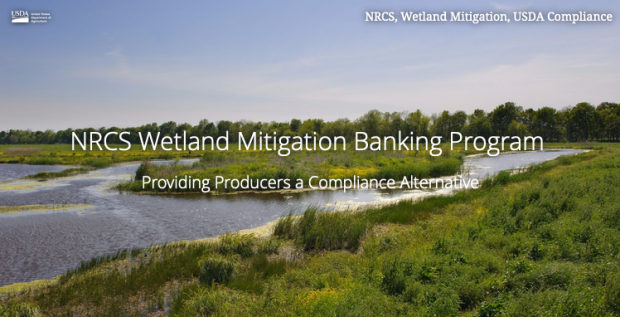 Deadline: NRCS Wetland Mitigation Banking Program