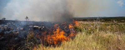 Field Day: Understanding the Impacts of Fire on Your Property @ Marietta (Noble Research Institute Coffey Ranch)