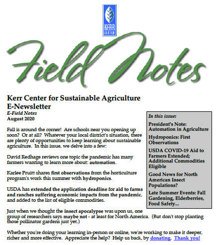 Field Notes – August 2020