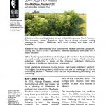 elderberry variety trial