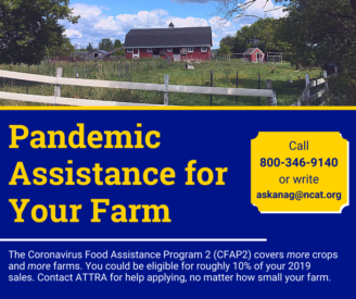 CFAP2 Deadline Dec. 11 – Free Assistance Available