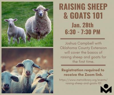 Raising Sheep & Goats 101 @ online