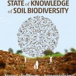 new report soil biodiversity