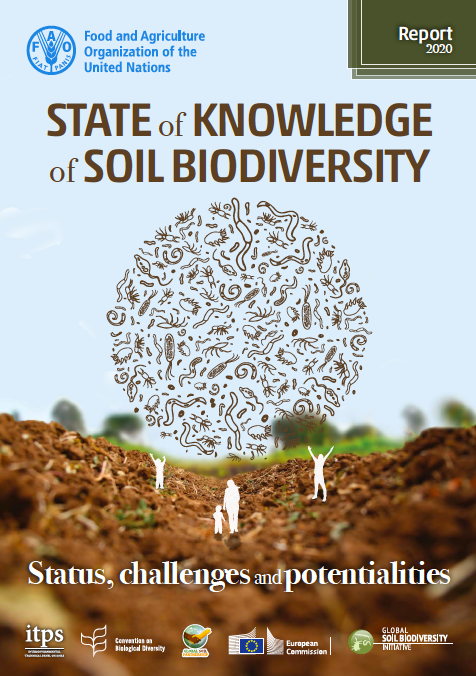 New Report Highlights Importance of Soil Biodiversity