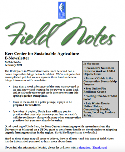 Field Notes February 2021