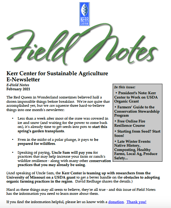 Field Notes – February 2021