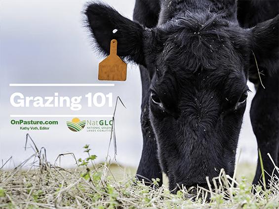 free grazing e-book