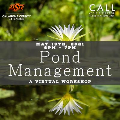 Pond Management: A Virtual Workshop @ online