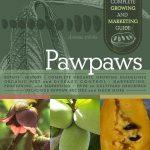 pawpaws growing marketing guide