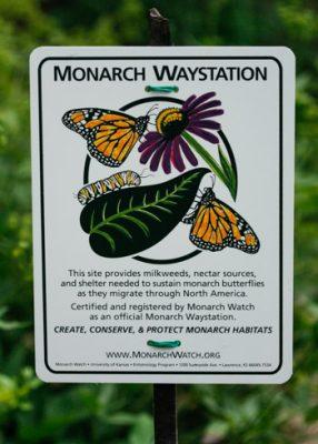 Create a Pollinator Overwintering Habitat (Monarch Waystation) @ Oklahoma City (Myriad Botanical Gardens)